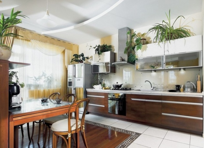 Сживыми растениями любая комната будет смотреться свежее. Главное— выбрать неприхотливые сорта рас