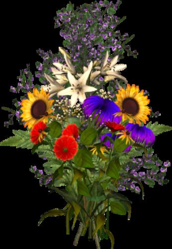 http://img-fotki.yandex.ru/get/5636/39663434.363/0_87123_6f6f9609_L.jpg