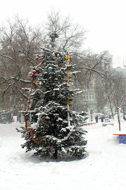 Новогодняя елка на Пейзажной аллее