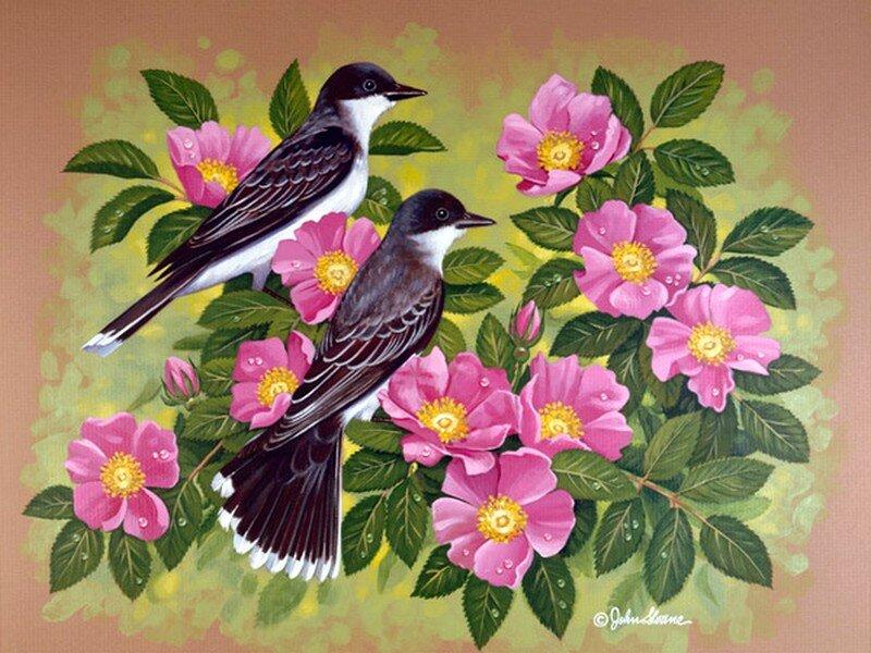Песня весення птиц за окном,
