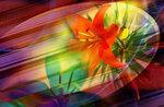 Цветочный фон