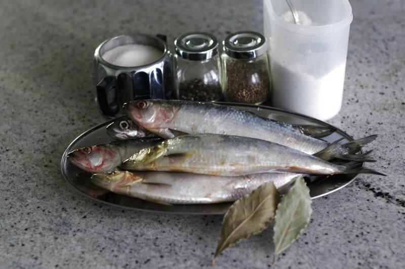Как сделать в домашних условиях из рыбы селедку