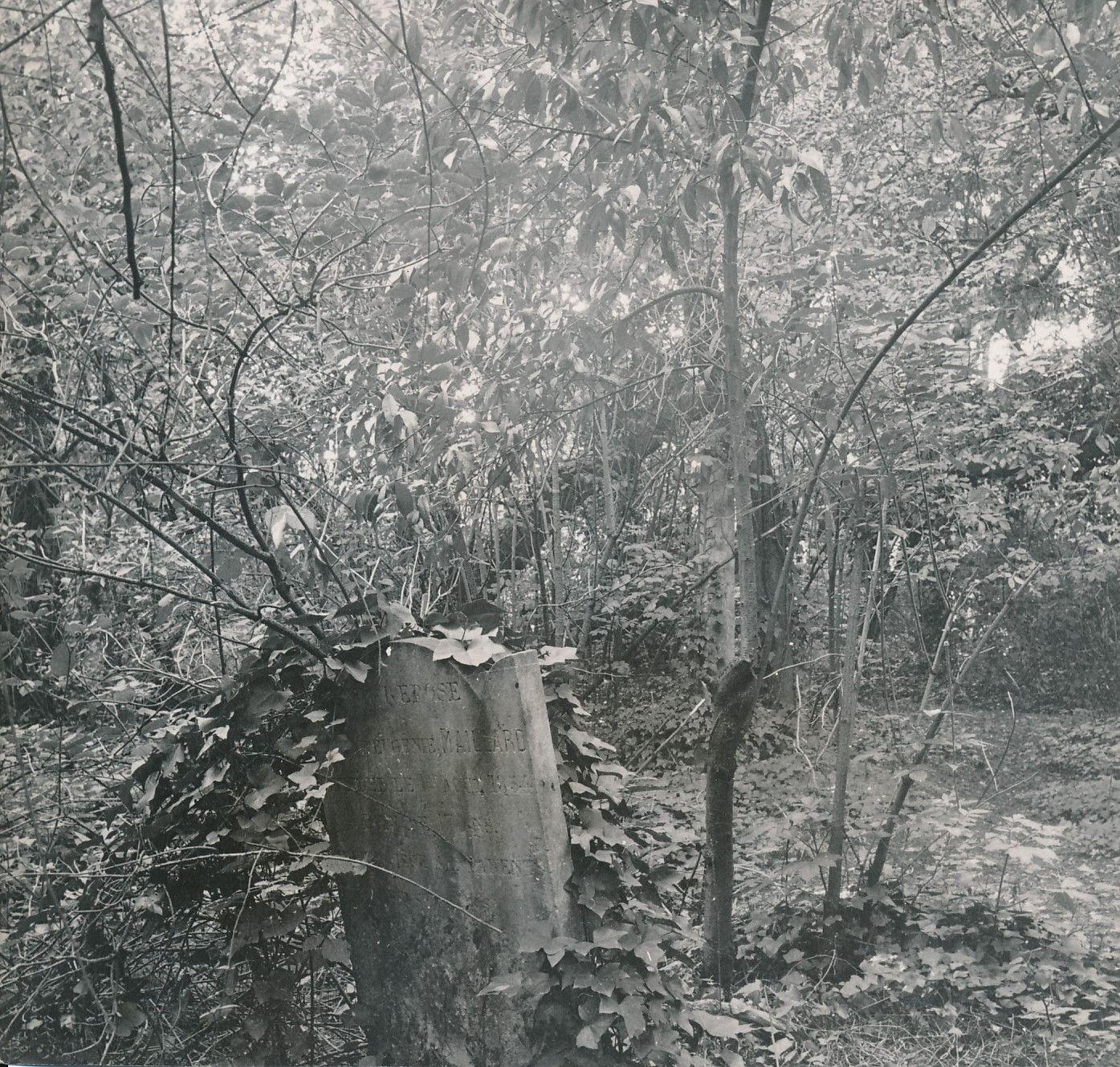 Кладбище в Лоншане. Старое надгробие
