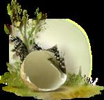 NLD Egg cluster.png