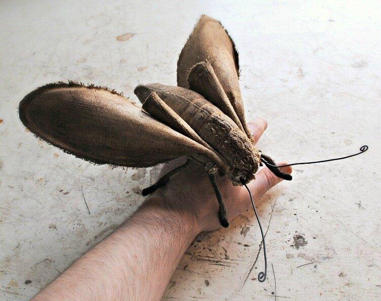 Коллекцию бабочек и моли сшить не хотите А мистер Финч шьет) (11) (435x650, 191Kb)