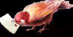 ldavi-heartwindow-bird4.png