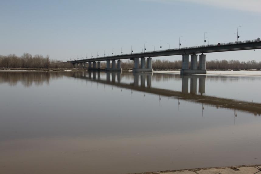 новый мост барнаул рыбалка