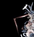 saskia_enapesanteur_clusters (3).png