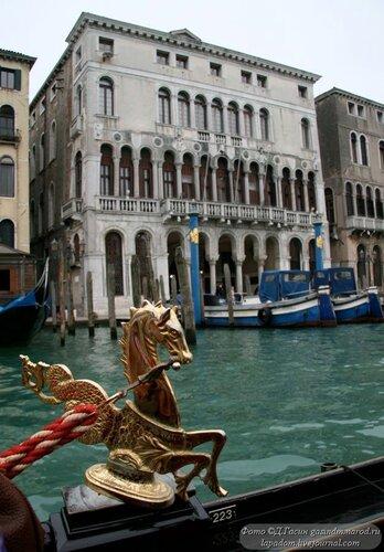 Венеция фотропривет