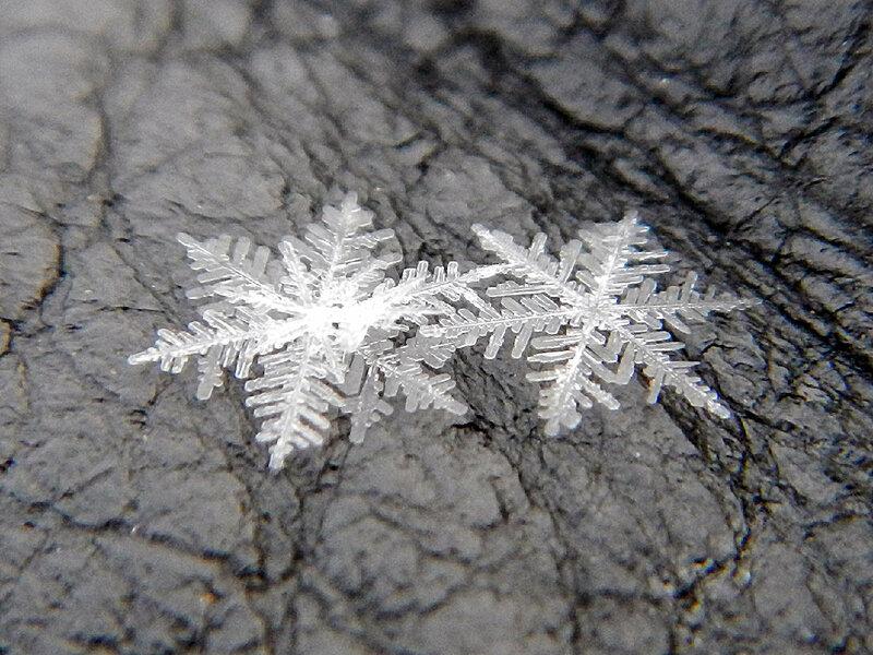 снежинка DSCN1208.jpg