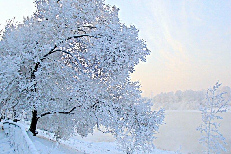 Что происходит на свете? А просто зима…..