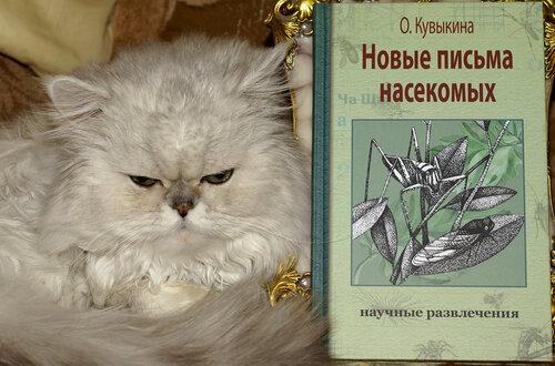 Моя новая книга!