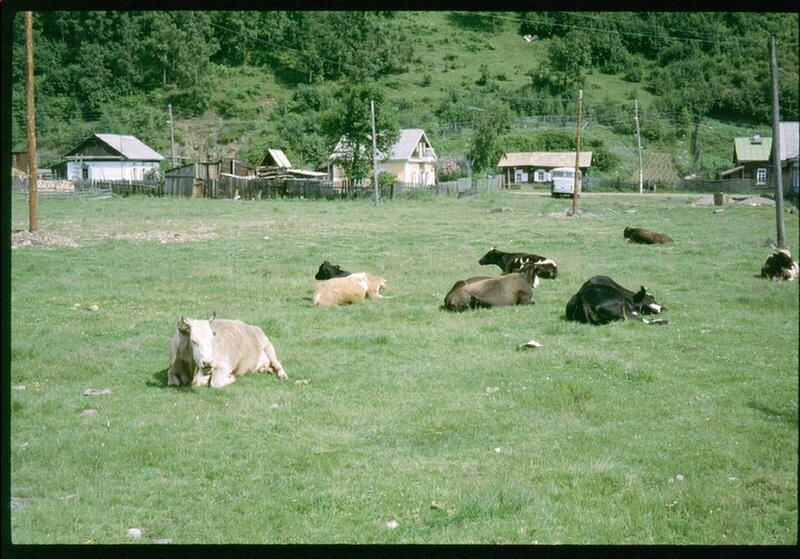 157.Село Николы на Байкале