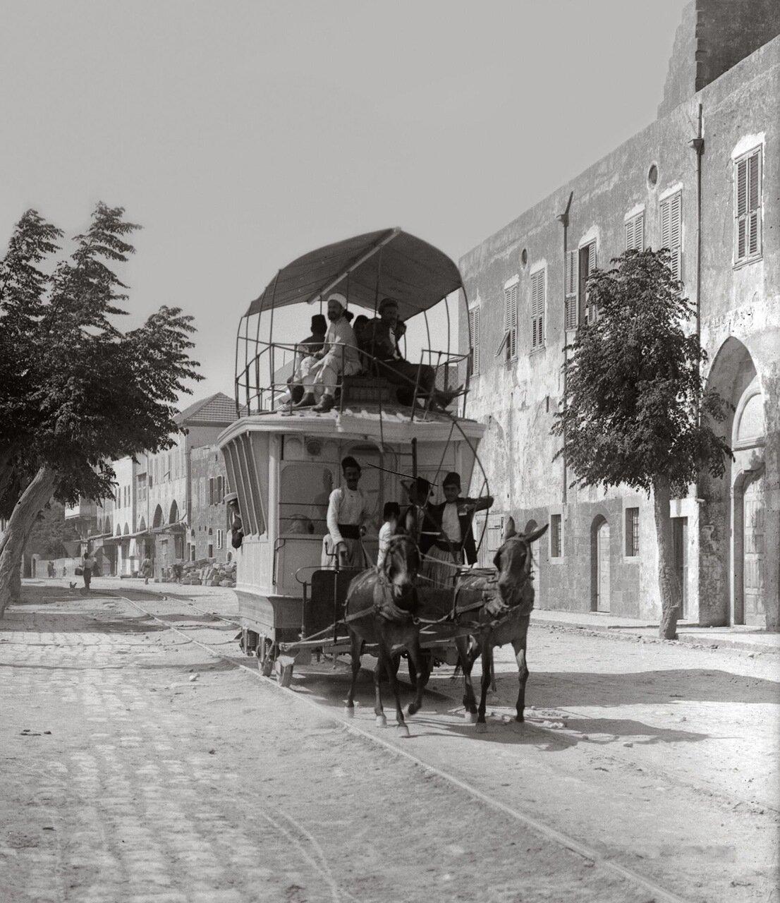 Трамвай запряженный мулами. Триполи, Ливан. 1900-1920 гг.