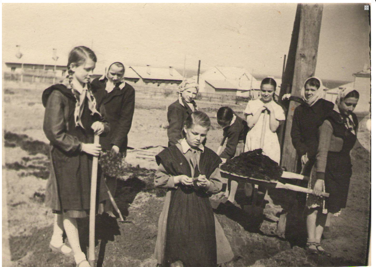 Ученики школы №3 (на ул.Калинина) под руководством учителя биологии Сысоевой К.Н. готовят пришкольный участок к посадкам. Конец 50-х гг. ХХ в.