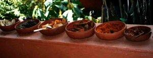 Анна Печенова, Индия, штат Гоа - индийская кухня