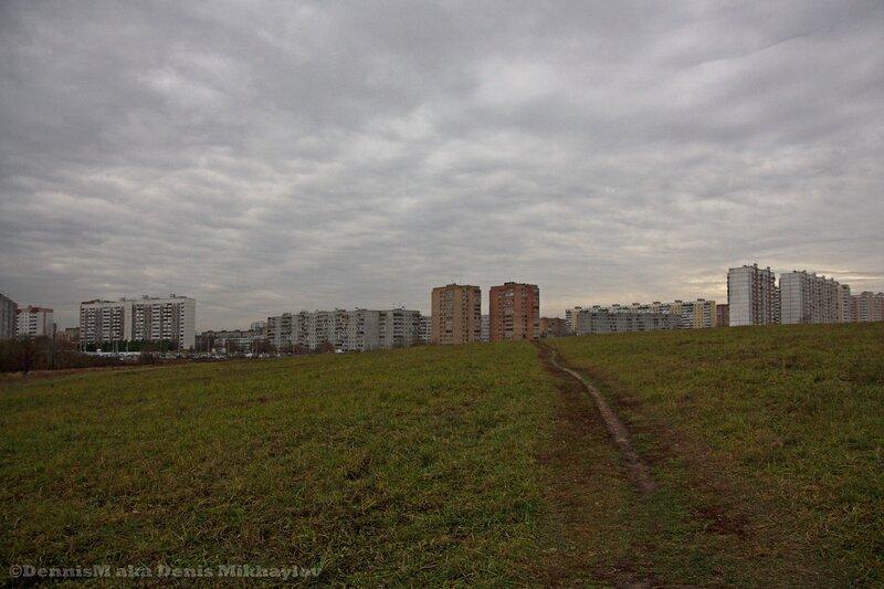Панорама Фрязино с Гребневского поля.