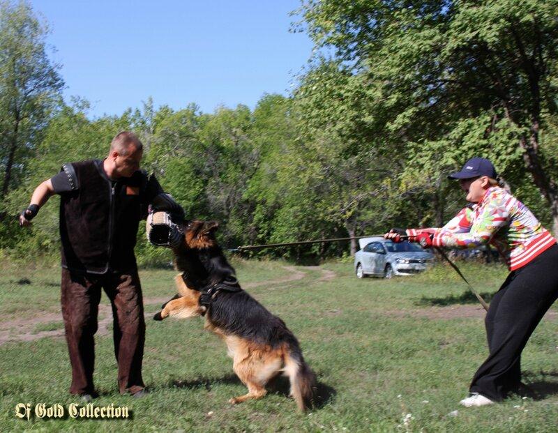 http://img-fotki.yandex.ru/get/5638/134559744.c/0_91030_5df60940_XL.jpg