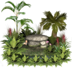 plants_and_rocks_7_by_collect_and_creat-d5t8mqz.png
