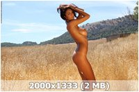 http://img-fotki.yandex.ru/get/5638/169790680.4/0_9d48a_a795a466_orig.jpg
