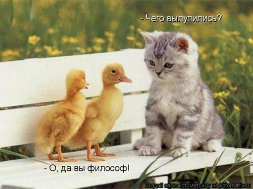 http://img-fotki.yandex.ru/get/5638/194408087.1/0_8e1e7_d6b16858_L.jpg