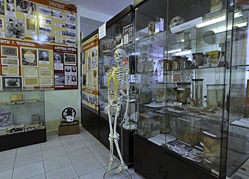 Человеческий скелет (04.04.2013)