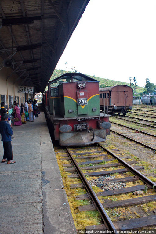 Шри-Ланка_Железная дорога_13
