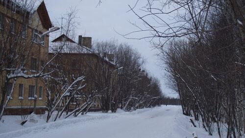 Фото города Инта №2880  Геологическая 1, 3 и 5 31.01.2013_13:41