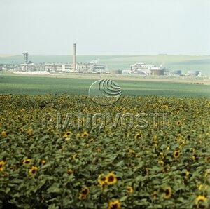 Гырбовский сахарный завод, Фрунзе, Молдова