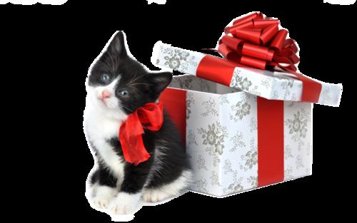рождество_1.png