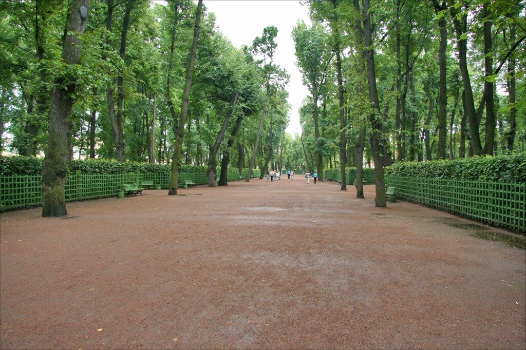 Летний сад, Главная аллея