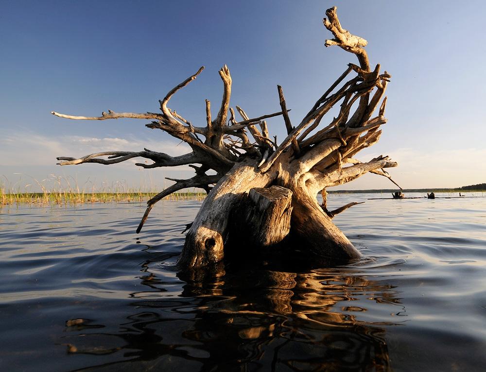 Озеро Большая Акуля