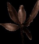Lilas_btd_foliage5.png