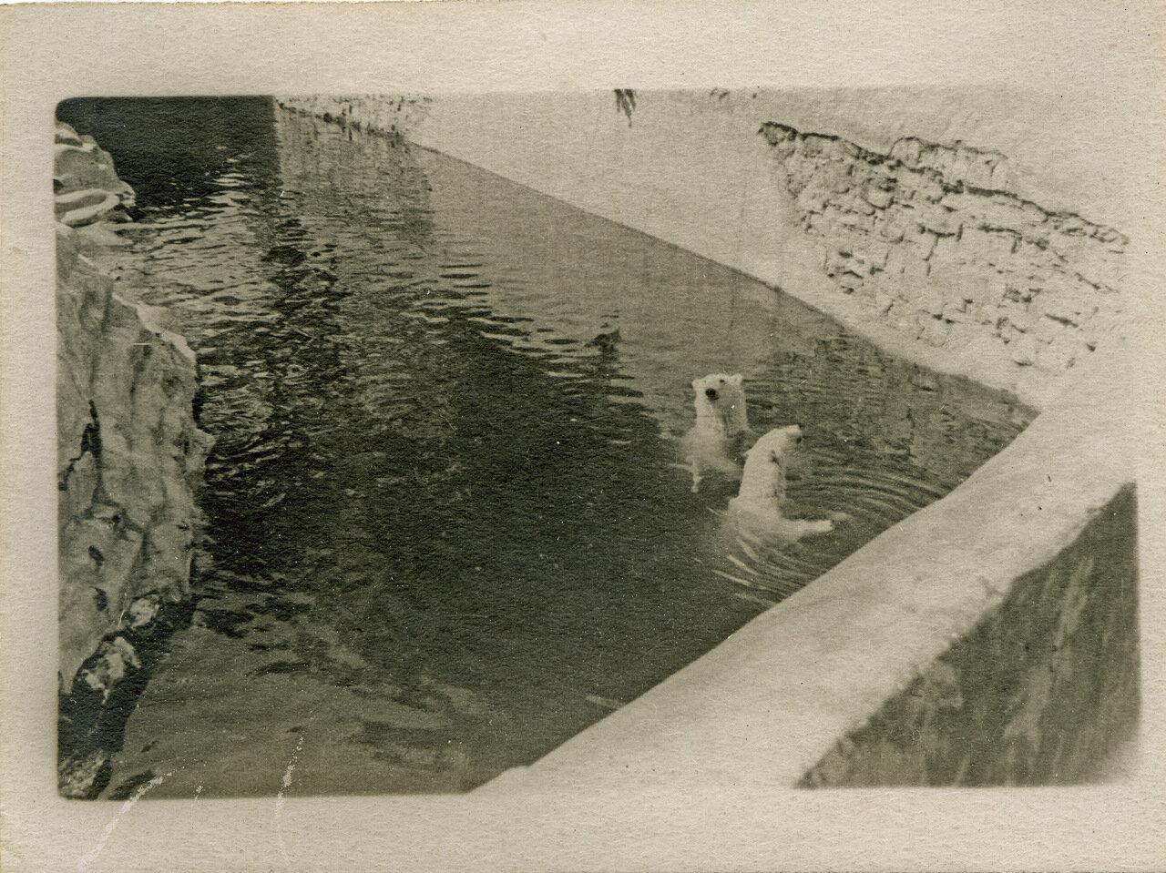 Московский зоопарк. 1940 г.