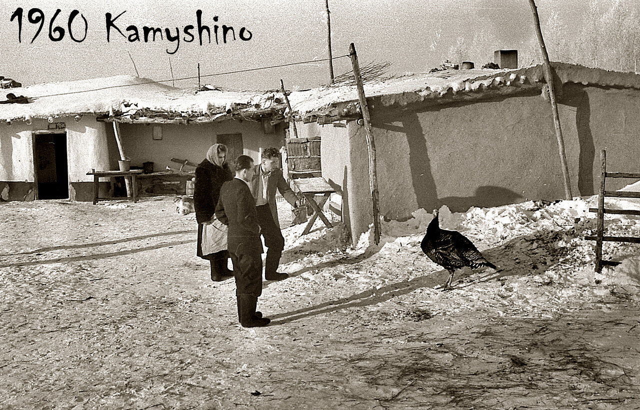 13. 1960. Омская область. Камышино. Цыпа, цыпа...