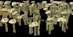Lug_Grass_Flower (11).png