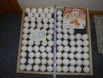 """количество куриных и гусиных яиц разного размера в лотке предварительного инкубатора """"MULTILIFE"""""""