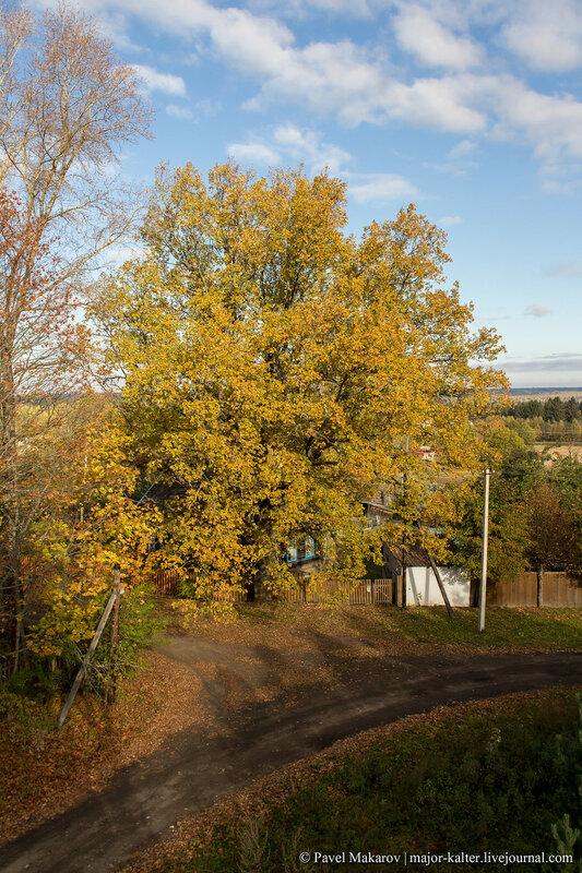Осень в Татево