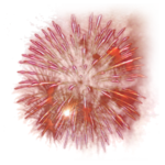 mds7698 Firework.png