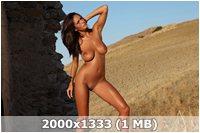 http://img-fotki.yandex.ru/get/5639/169790680.13/0_9d9b4_362b9f0b_orig.jpg