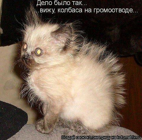 http://img-fotki.yandex.ru/get/5639/194408087.1/0_8de27_ba8f3bcb_L.jpg