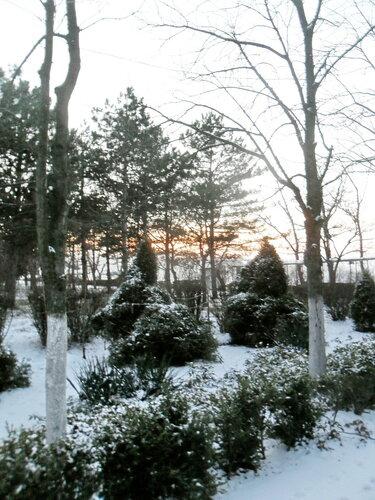 Вечер в зимнем парке