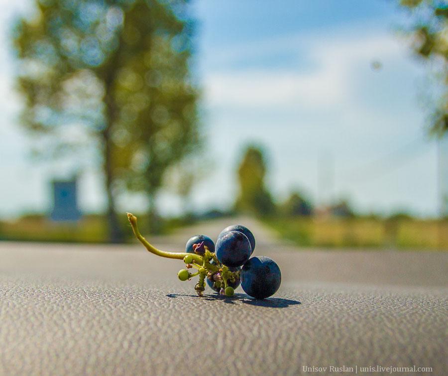 Автомобильное путешествие