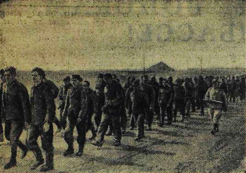 «Красная звезда», 9 сентября 1943 года, освобождение Донбасса, оккупация Донбасса, пленные немцы, пленные немцы в советской армии, немцы в советском плену