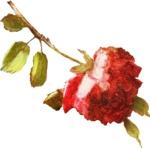 ldavi-heartwindow-rose3.png