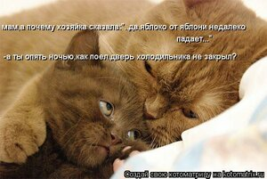 http://img-fotki.yandex.ru/get/5640/194408087.2/0_921f7_cb12edac_M.jpg