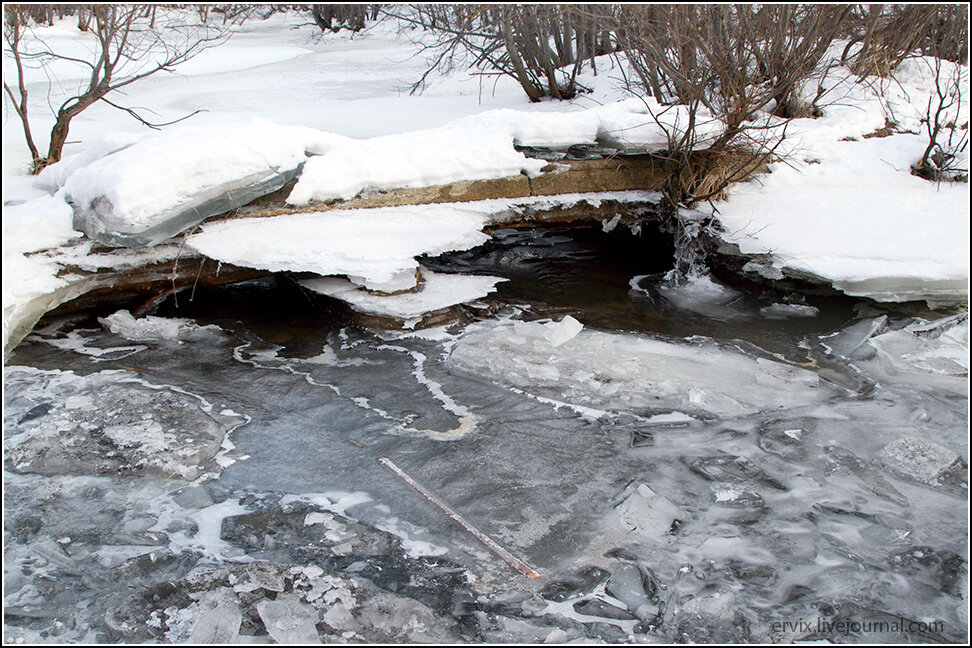Ручьи на Камчатке