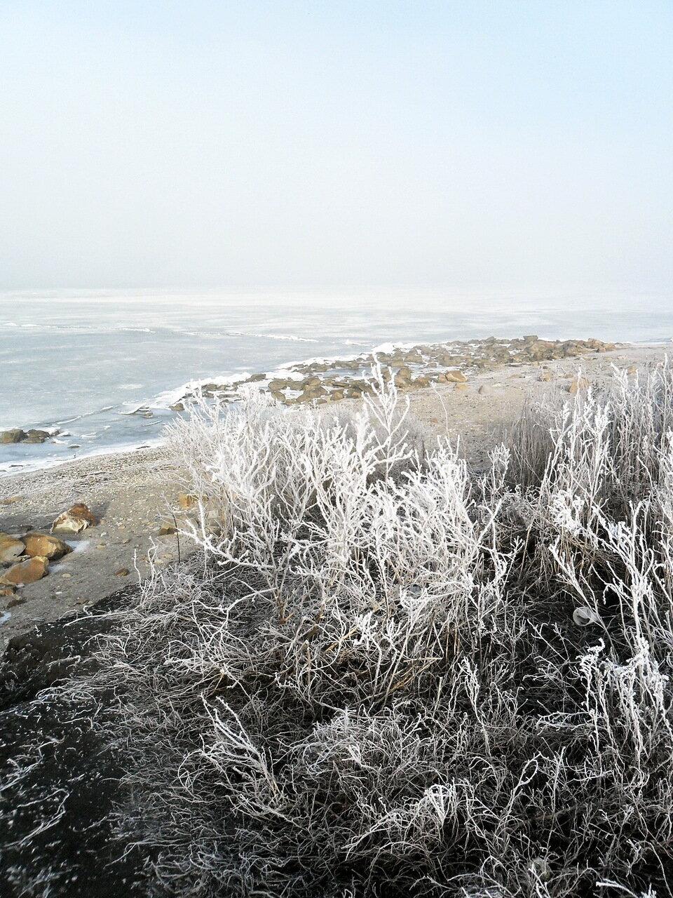 На Азовском побережье, январь