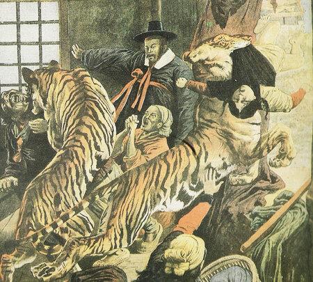 Тигры и леопарды когда-то бродили по большей части Кореи – единственными исключениями были остров Чеджу и несколько маленьких островков./ фото предоставлено из коллекции Роберта Неффа