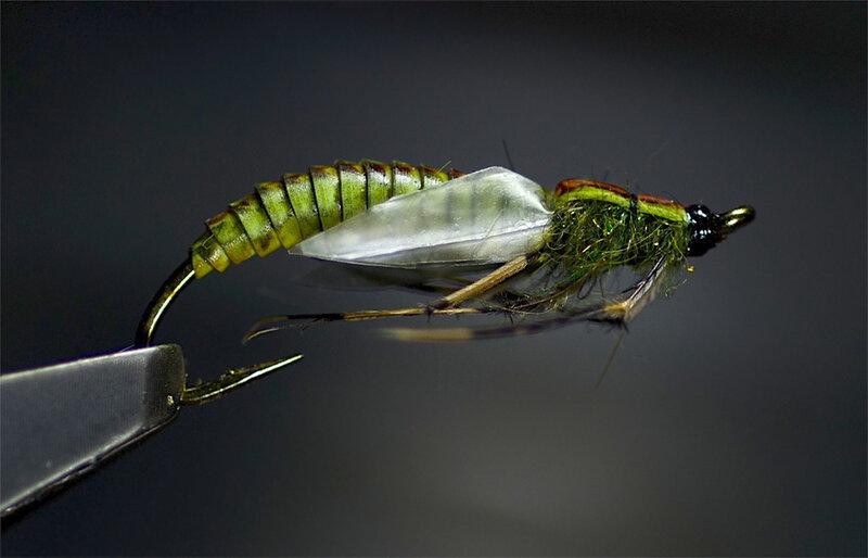 Izbor nimfe za prolećni lov pastrmke - Page 8 0_8562e_dd856b40_XL.jpeg